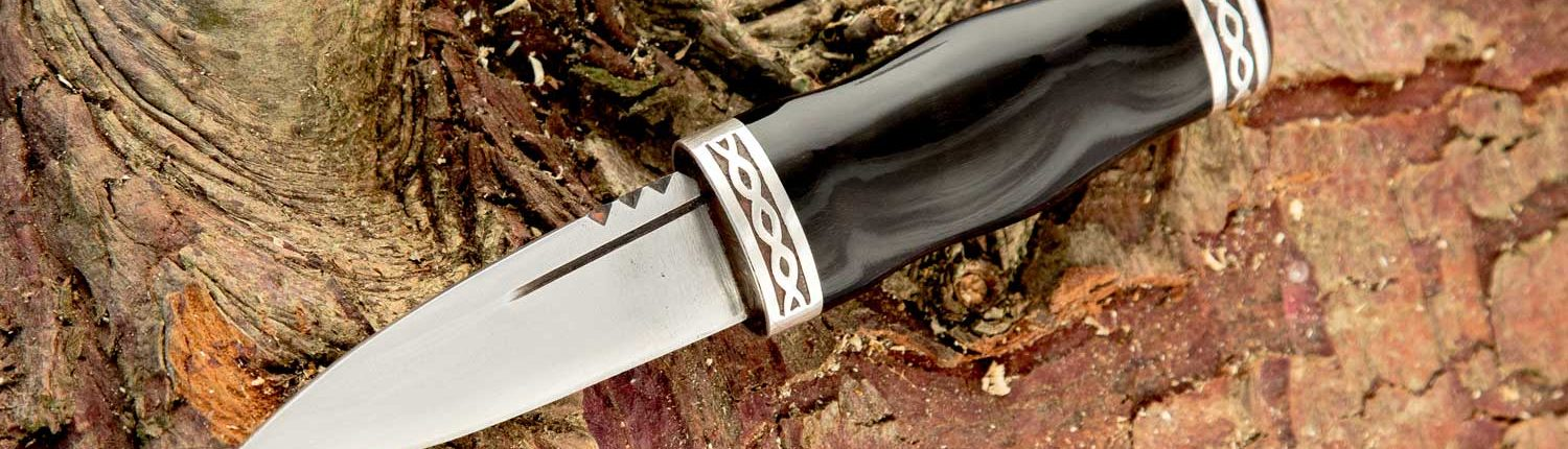 sgian dubh on log